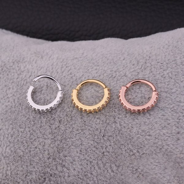 16192 51cb51 600x601 - Sellsets 1PC 6/8/10mm Cz Nose Hoop Helix Cartilage Earring Daith Snug Rook Tragus Ring Ear Piercing Jewelry
