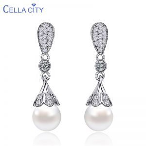 17546 985a23 300x300 - Classic 925 Silver Drop Earrings